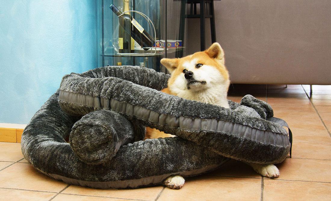 Cuscino comodo per cani e gatti