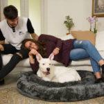 Cuscino in morbido pile per cani e gatti