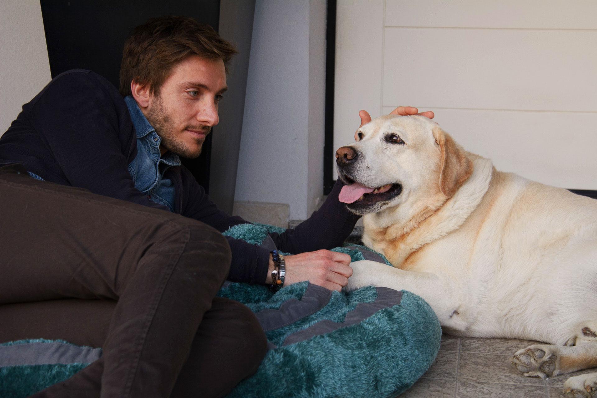 CodediModa: cucce, cuscini e letti per cani e gatti
