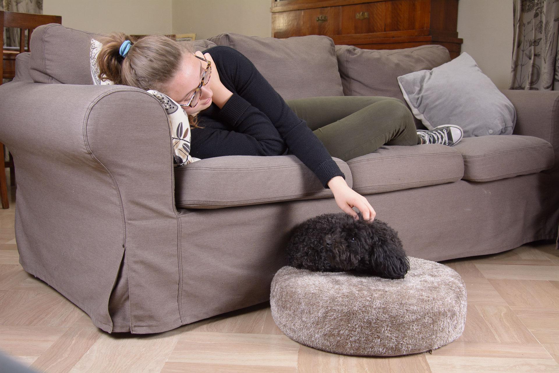Cuscino di qualità per cani