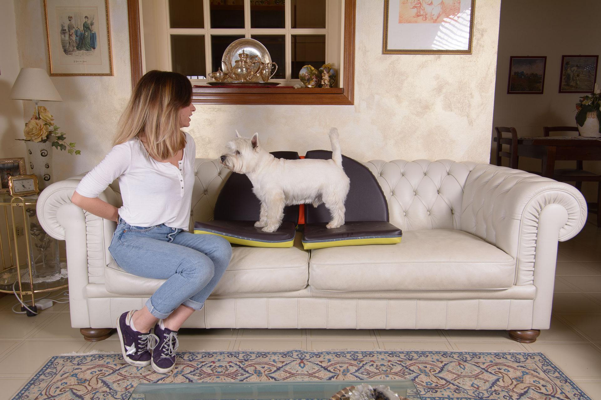 Cuscino protettivo per divano per cani
