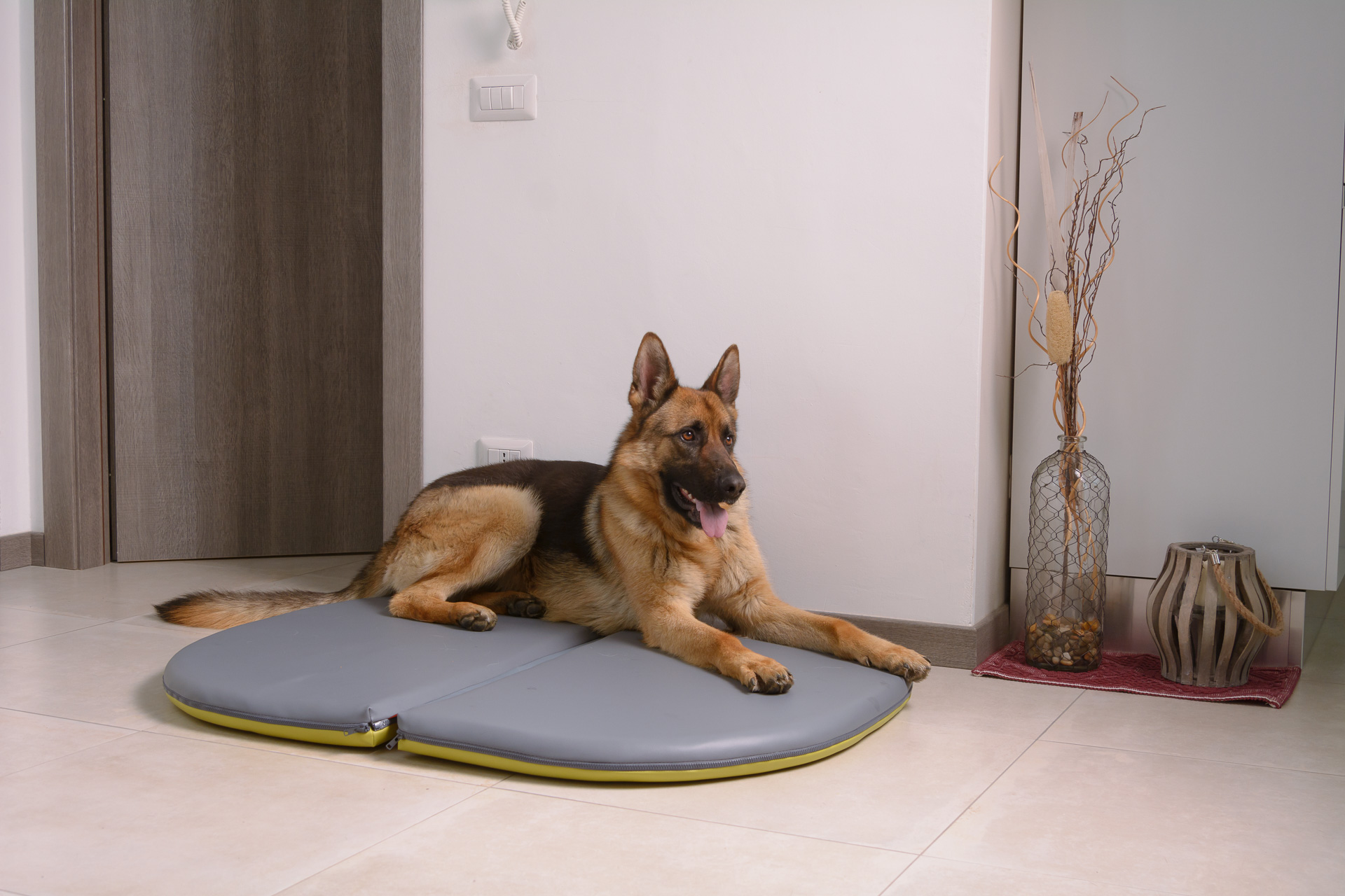 Cuscino gigante per cani
