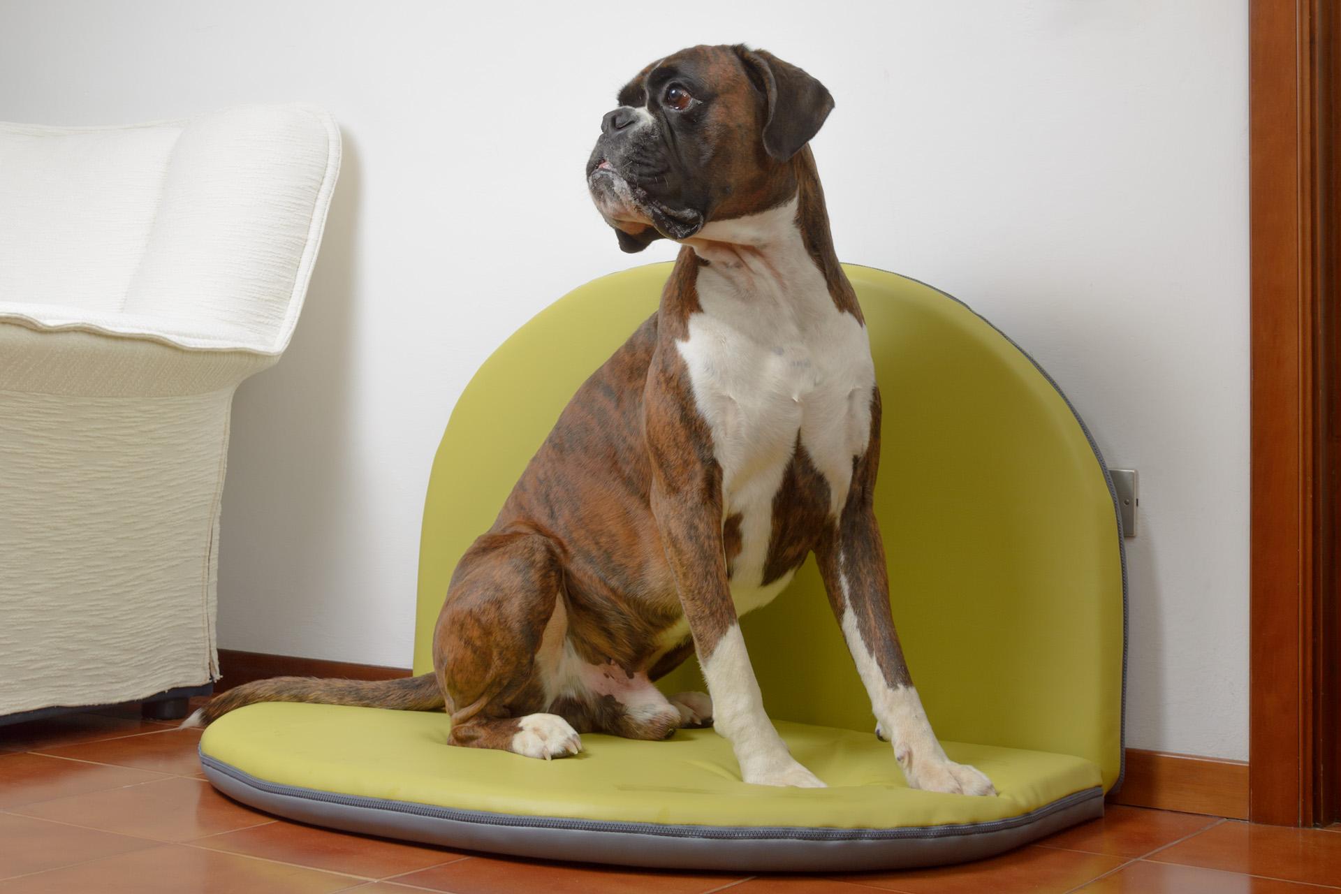 Cuscino sfoderabile per cani
