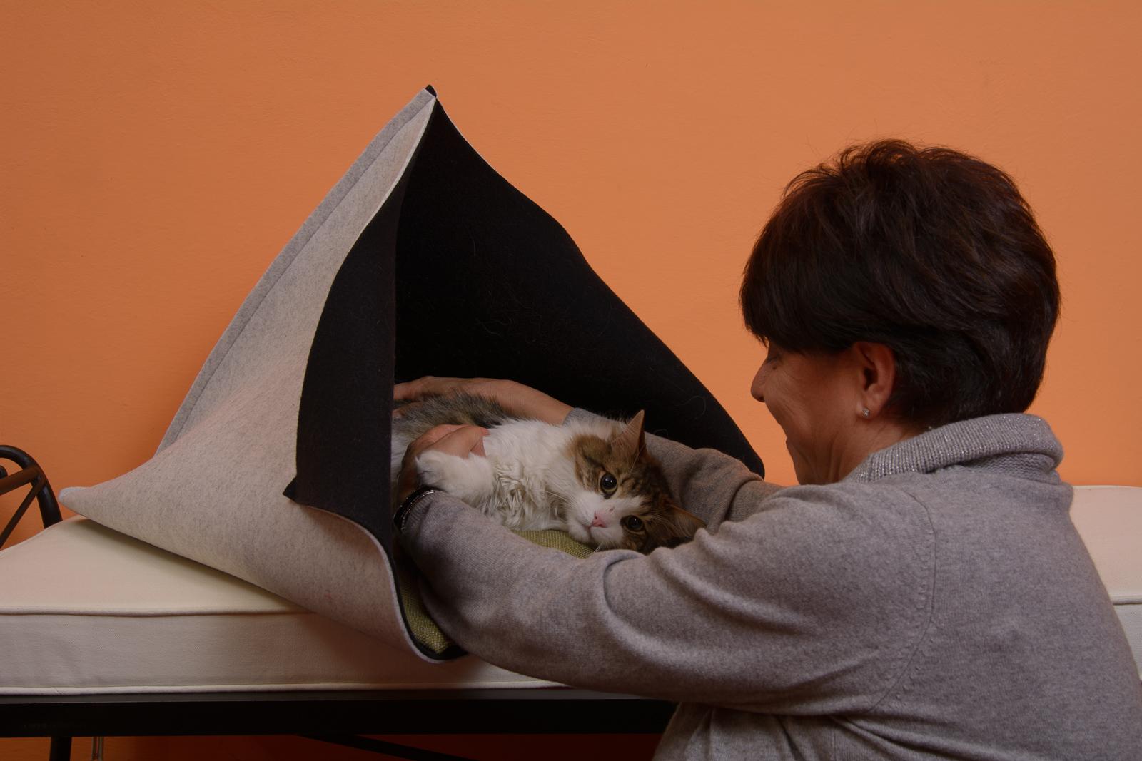 Cuccia di classe per gatti