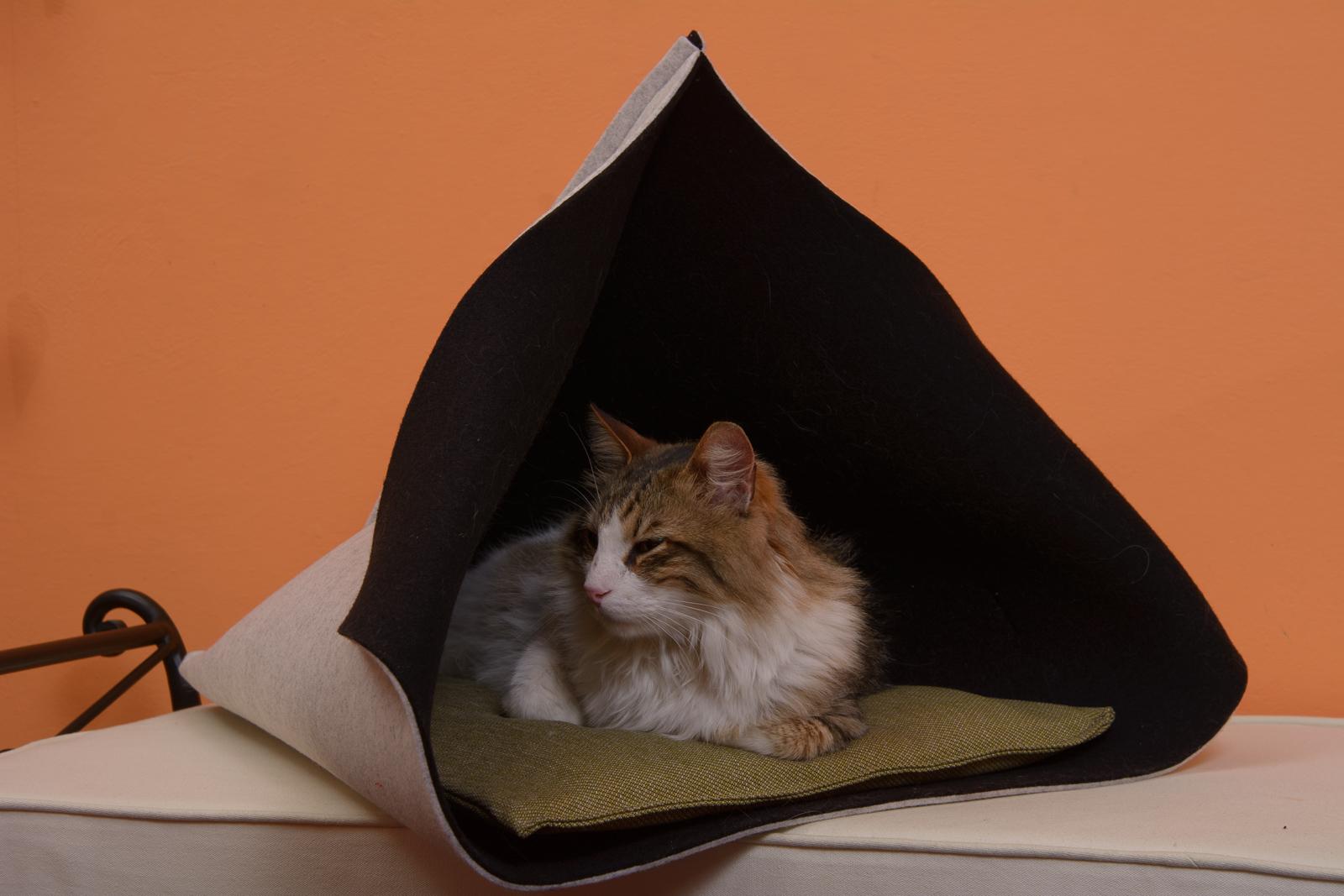 Cuccia morbida gatto